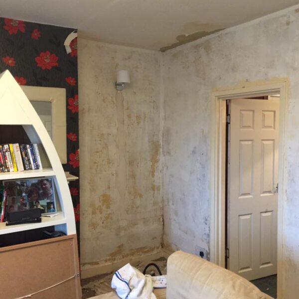 Výmalba domu, lakování radiátorů Brno